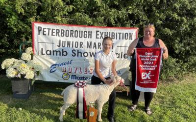 2021 Ernest Boyles & Sons Ltd Junior Market Lamb Show Results