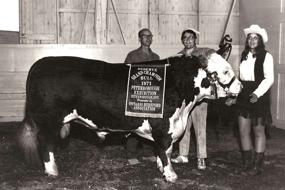 1971 Reserve Grand Champion Bull